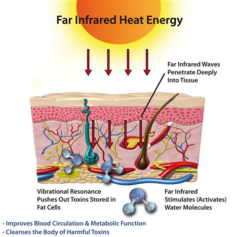 infrared heat l benefits october 2012 far infrared heat your health