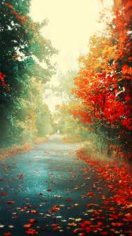 Autumn Wallpapers For Phone Hd by Top 20 Hd Iphone 5 Wallpapers Of All Time