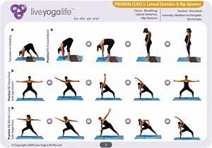 Prenatal Yoga Complete Set (Classes 1 to 7) Live Yoga Life
