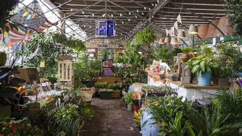 Urban Gardening : The 10 Best Plant Shops In Nyc