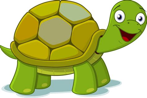 Turtle Images Turtle Clipart Png Transparent Pencil And In Color