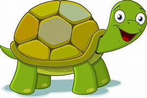 Turtle clipart png transparent - Pencil and in color ...
