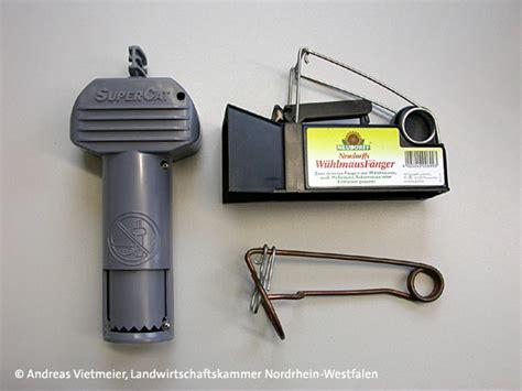 Carbid Gegen W Hlm Use 1472 by Maulwurf Fangen Maulwurf Fangen Ist Das Erlaubt Maulwurf