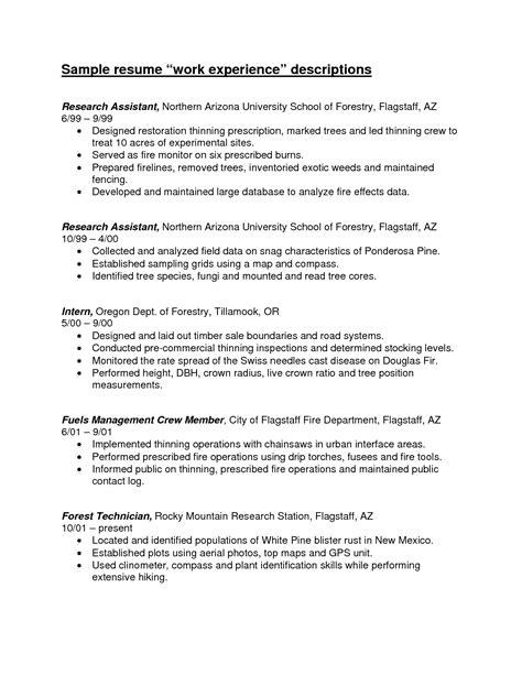 resume work experience format image resume work experience exles berathen com