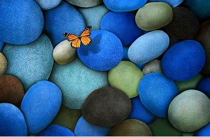 Butterfly Stones Wallpapers Animals Stone Butterflies Colours