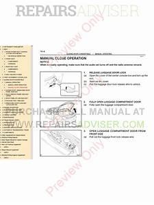 Dse 7320 Wiring Diagram Pdf