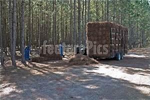 Woodworking Plans Pine Straw Baler Free Download PDF