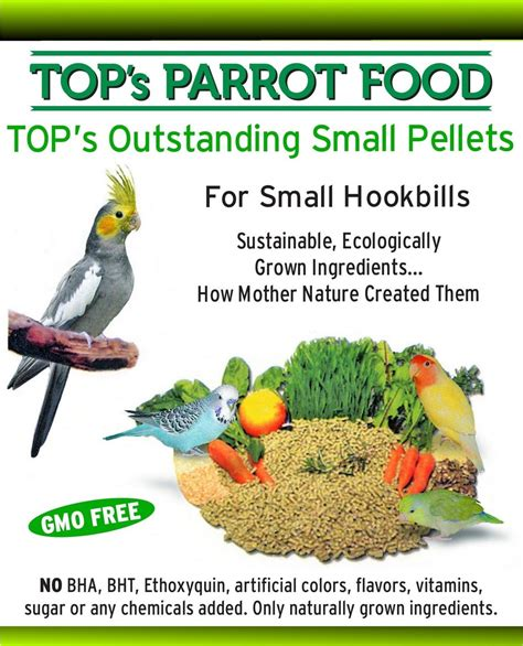 organic parrot food top s parrot pellets for small birds