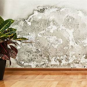 Feuchtigkeit In Wänden : wasserschaden rohrbruch mauerwerksentfeuchtung vebatec technik gmbh ~ Markanthonyermac.com Haus und Dekorationen