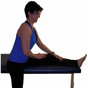 Hamstring Stretches - your source of information for ...