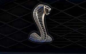 Ford Mustang Cobra Logo - Car Autos Gallery
