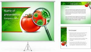 food safety and inspection symbol with a magnifying glass With food safety powerpoint template