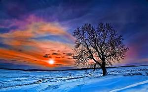 Beautiful Winter Wallpapers - Wallpaper Cave