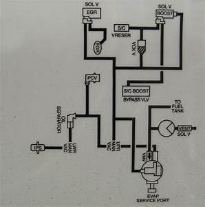 1999 Cobra Enginepartment Vacuum Diagrams