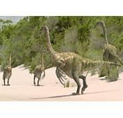 Therizinosaurus En Images Video  Dinosoria