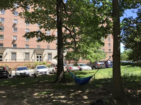 Best Way To Hang A Hammock Between Trees by The 6 Best Places To Hang Your Hammock Around Umd