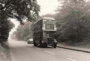 111 best Epping forest images on Pinterest | Epping forest ...