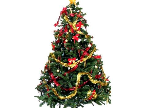 christmas tree decorated christmas tree origin of the