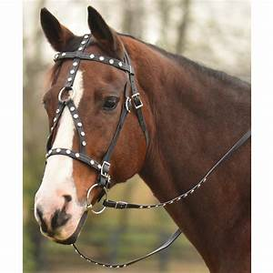 Endurance Granny: Winners of the Two Horse Tack Give-Away