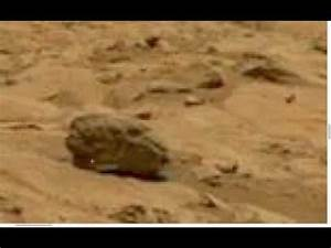 Copy of Life on Mars NASA Latest. Reptilian SKULL found ...