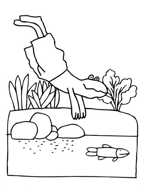 Kleurplaat Silvie En by Kikker Max Velthuis Thema Kikker Kleuters Frog Theme