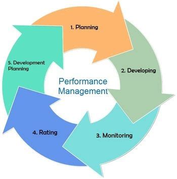 performance management process   human resource