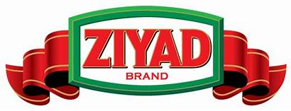Ziyad Brothers Importing Website Launches Launch Marketing