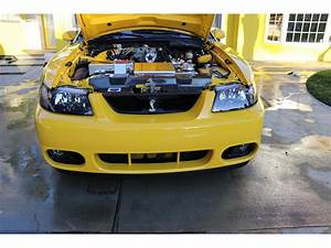 2004 Ford Mustang Cobra for Sale | ClassicCars.com | CC-1144666