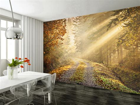 wall mural autumn forest wallsorts