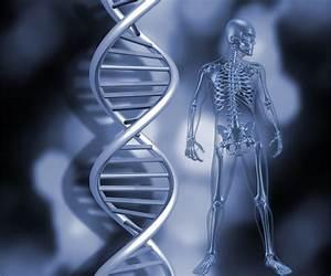 Genetics Test Ridgewood