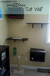 diy cat shelves diy cat wall jpg 1 061 215 1 600 pixels living