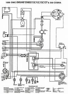 1987 Bayliner Capri Wiring Diagram