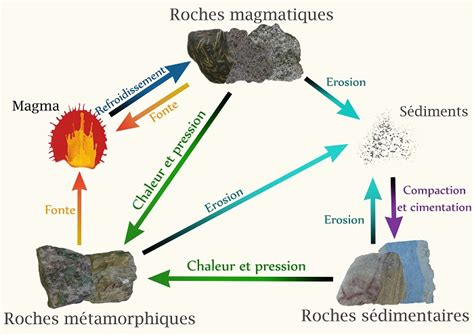 potager cuisine le cycle des roches simplyscience