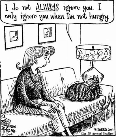 Cat Cartoons Funny Jokes Cartoon Funnies Bizarro