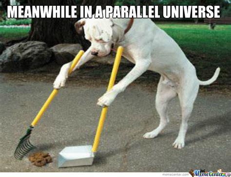 parallel universe  humans shit