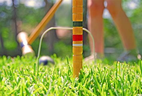 Backyard Croquet by The 8 Best For Your Backyard Revolutionary Gardens
