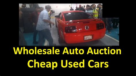 Live Auto Auction Bidding & Buying Wholesale Dealer