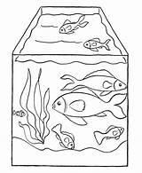 Coloring Fish Tank sketch template