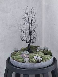 Bonsai Garten Hamburg : bonsai bonsai en kokedama pinterest jardins hamburg ~ Lizthompson.info Haus und Dekorationen