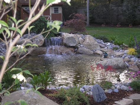 fish ponds with waterfalls 72 best images about fish ponds on pinterest backyard waterfalls pond waterfall and backyard