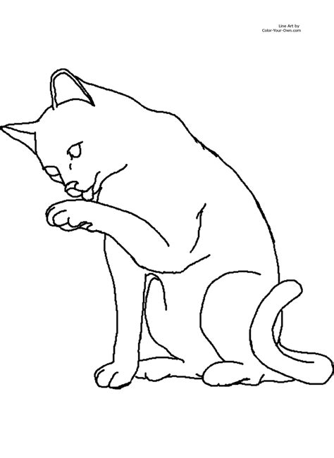 cat pictures to color cat coloring page