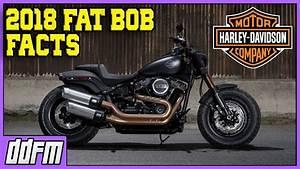 Harley Fat Bob 2018 : 2018 harley davidson fat bob specs and info youtube ~ Kayakingforconservation.com Haus und Dekorationen