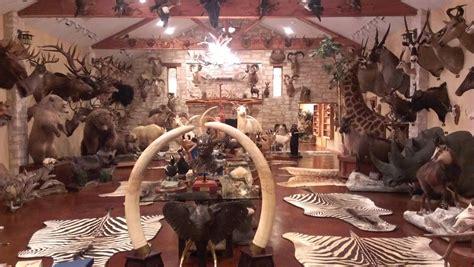 hunting trophy rooms    rhunting feels