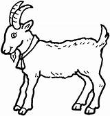 Goat Coloring Pages Animal Animals Printable Print sketch template