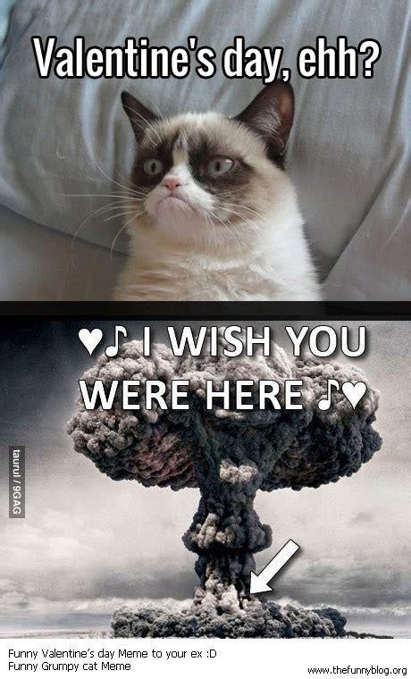 Grumpy Cat Meme Valentines Day - cat valentine funny quotes quotesgram