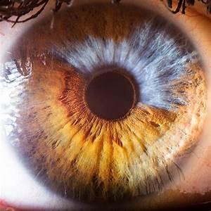 Suren Manvelyan Your Beautiful Eyes  U2014 Dop