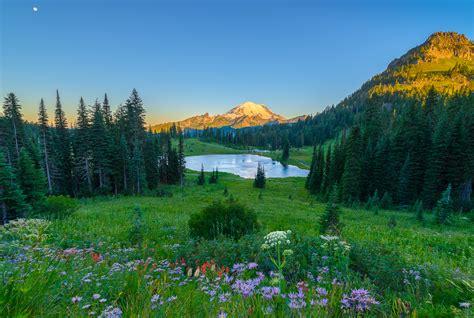 Chinook Pass Summit & Tipsoo Lake