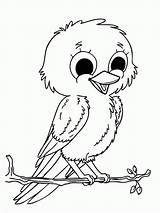 Coloring Canary Bird Popular sketch template
