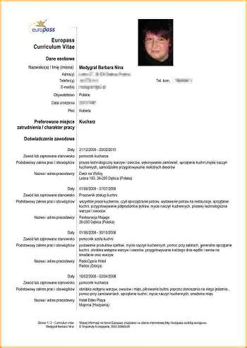 Modele Cv Recent by Modele De Cv Recent