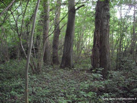 parcelle de bois a vendre 28 images parcelle 224 vendre at notre maison en bois site for